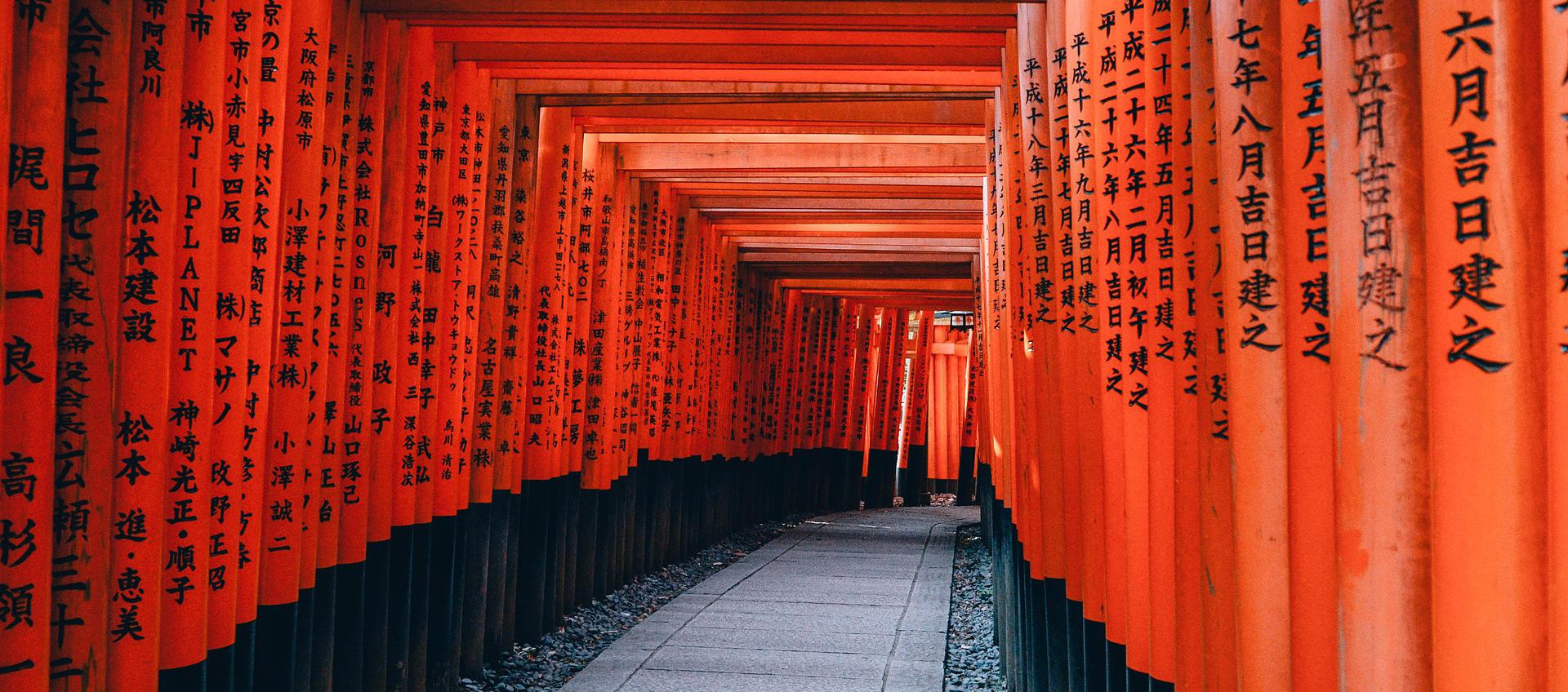 Przewodnik po Japonii
